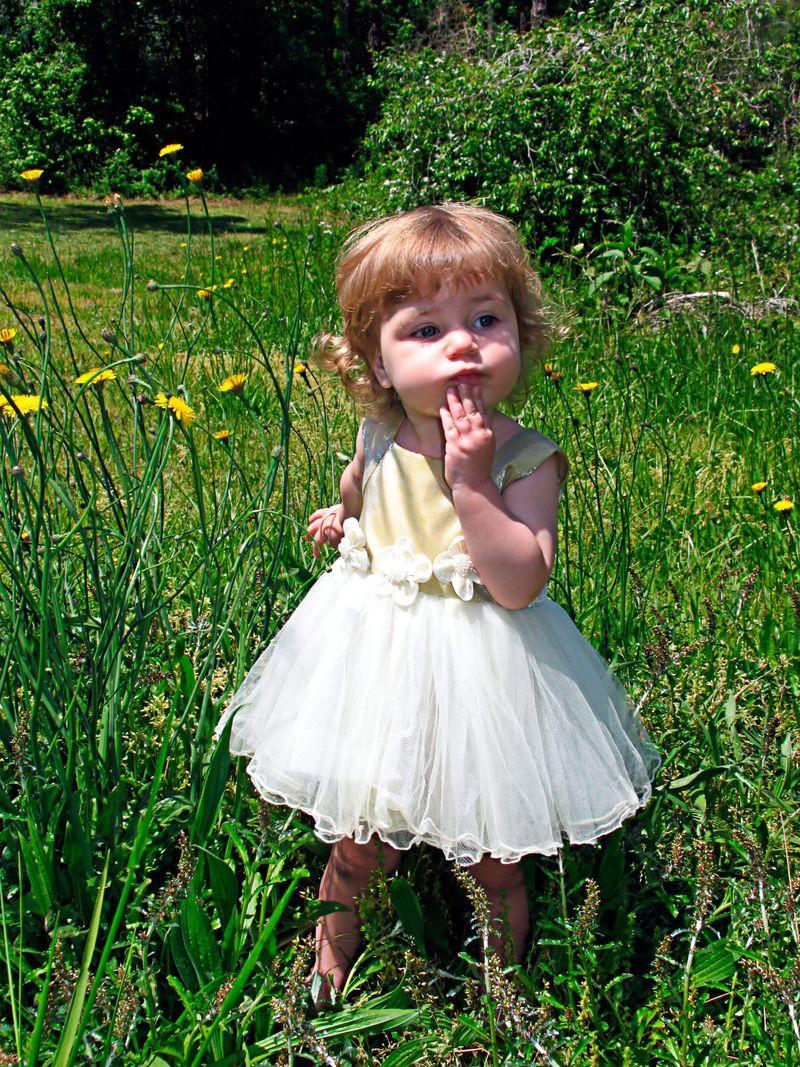 Dandeliongirl