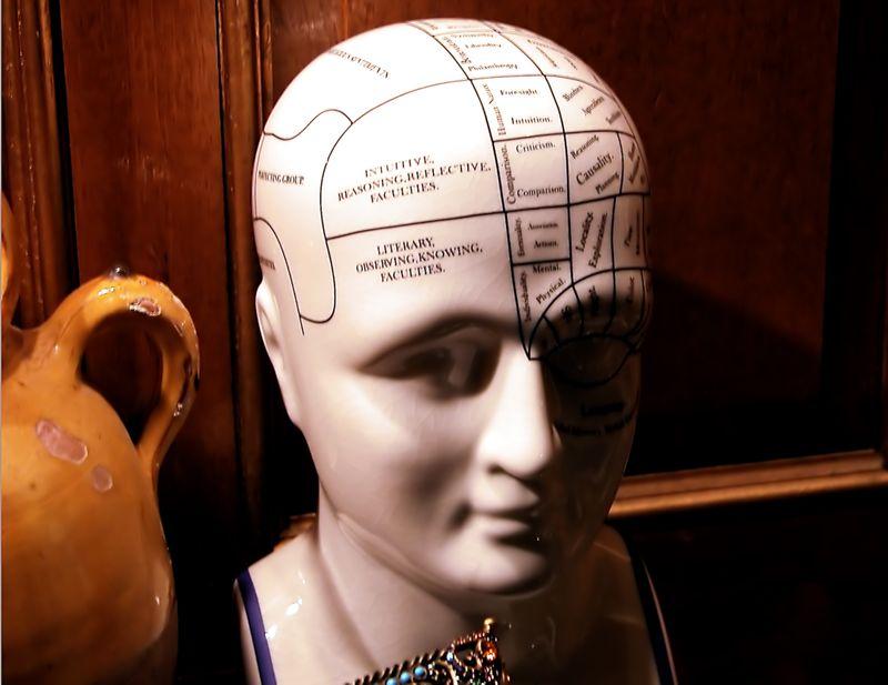 BrainCN9902