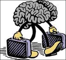 Cultural-Neuroscience