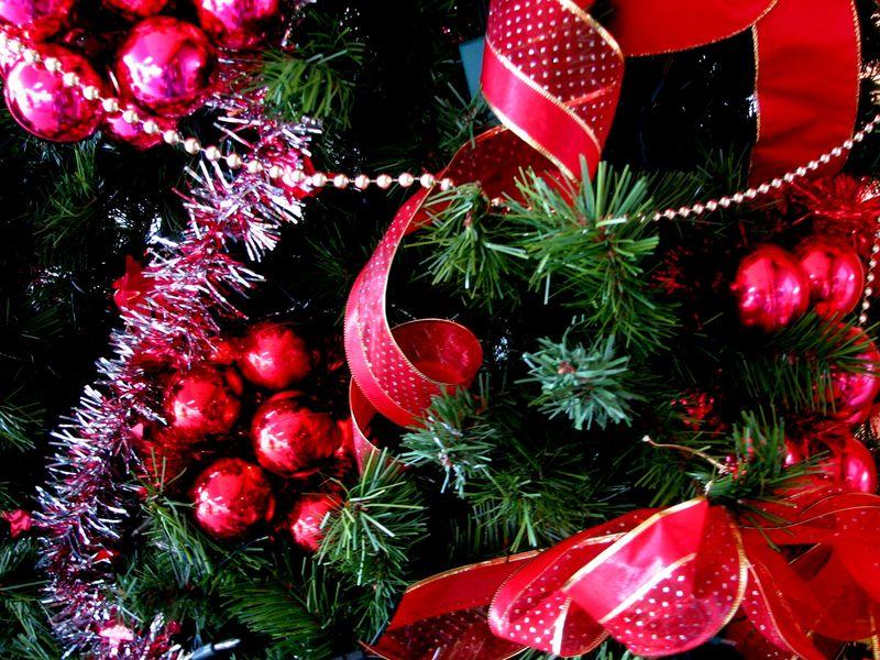 Christmasbk2_xenia